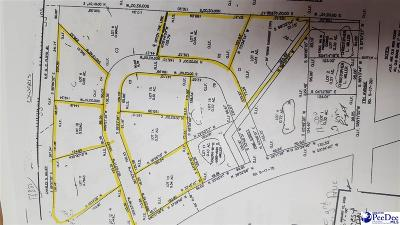 Lake View SC Residential Lots & Land Uc/Show For Back Up: $6,000