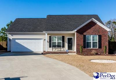 Effingham Single Family Home Uc/Show For Back Up: 3044 Red Berry Cir