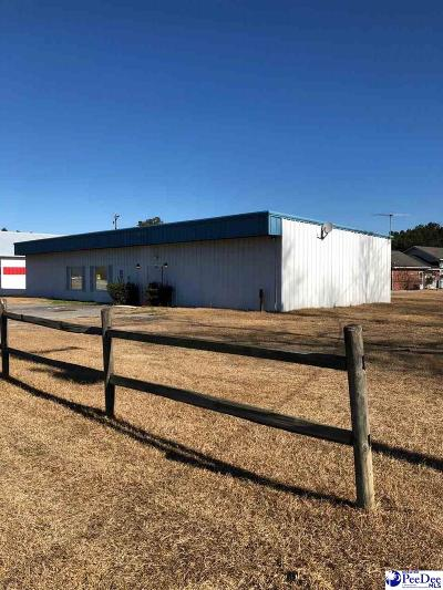 Florence, Flrorence, Marion, Pamplico Commercial For Sale: 910 S Pamplico Highway