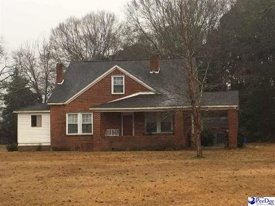 Dillon SC Single Family Home For Sale: $95,000