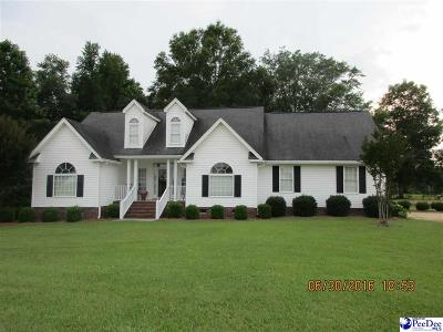 Dillon SC Single Family Home For Sale: $198,500