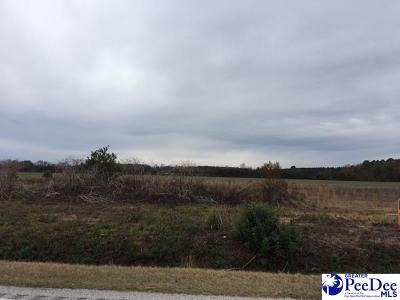 Commercial Lots & Land For Sale: Wisacky Highway