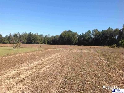Johnsonville Residential Lots & Land For Sale: Midway Highway