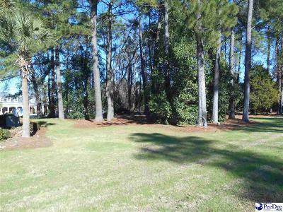 Florence, Flrorence, Marion, Pamplico Commercial Lots & Land For Sale: 1363 Second Loop Road