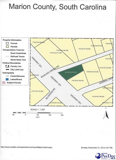 Marion County Residential Lots & Land For Sale: 101 Bowling Green Road
