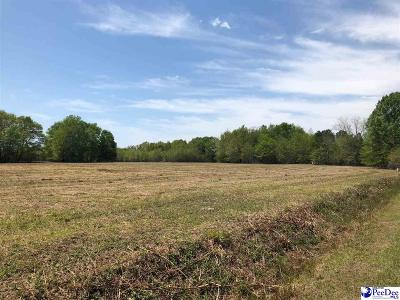 Dillon County Residential Lots & Land For Sale: Catfish Church Rd.