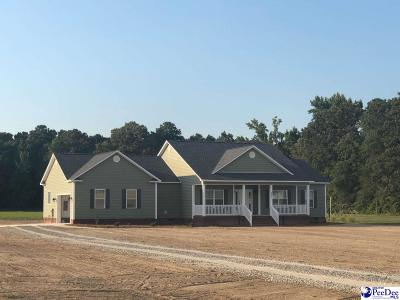 Florence SC Single Family Home For Sale: $235,900