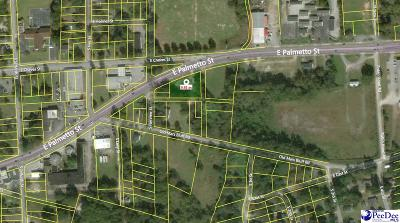 Florence, Flrorence, Pamplico Commercial Lots & Land For Sale: 1502 E Palmetto Street