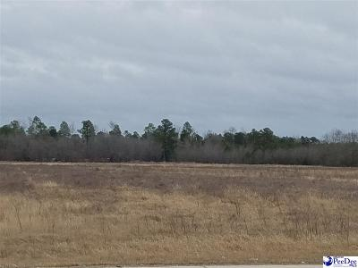 Marion County Residential Lots & Land For Sale: 6116 N Hwy 501
