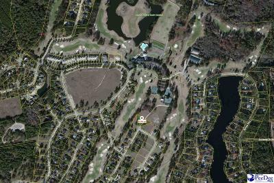 Darlington, Effingham, Florence, Flrorence Residential Lots & Land For Sale: 2320 Sun Vue Drive