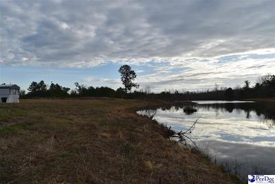 Pamplico Residential Lots & Land For Sale: W Seven Mile Road