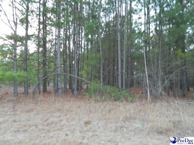 Pamplico Residential Lots & Land For Sale: Francis Marion Road