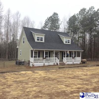 Hartsville Single Family Home For Sale: 2910 Bethlehem Road