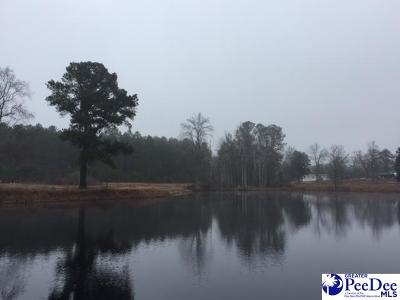 Latta SC Residential Lots & Land For Sale: $169,000
