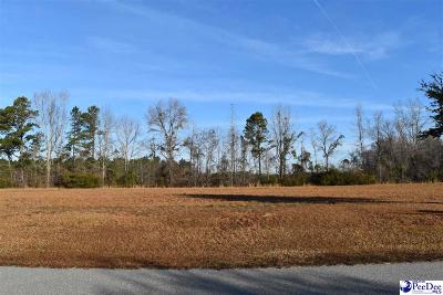 Pamplico Residential Lots & Land For Sale: 746 Tempe Avenue
