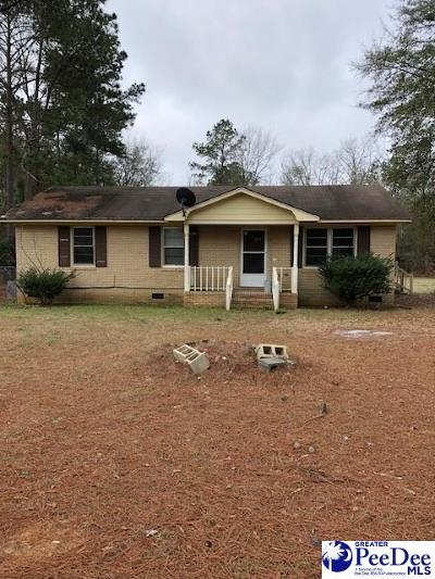 Darlington Single Family Home For Sale: 1220 Mechanicsville Hwy