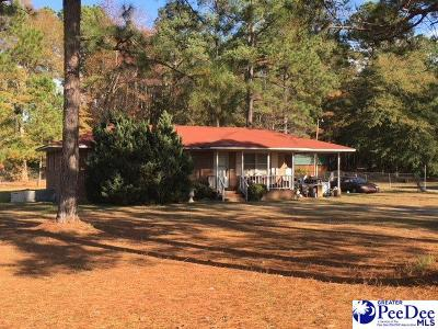 Darlington Single Family Home For Sale: 1335 Mechanicsville Hwy