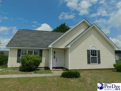 Effingham Single Family Home Uc/Show For Back Up: 2900 Bentgrass Court