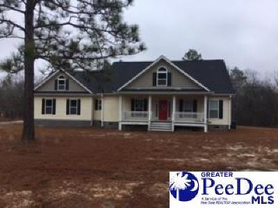 Hartsville Single Family Home For Sale: 1741 Geechie