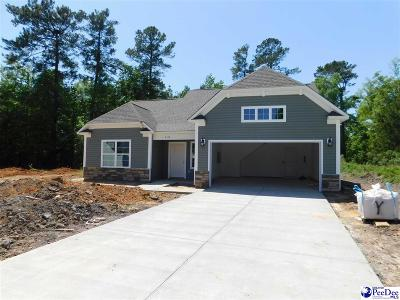 Florence County Single Family Home For Sale: 2102 Abernathy Dr