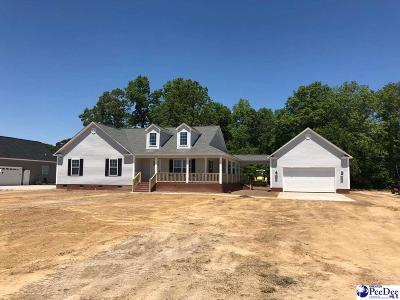 Florence County Single Family Home For Sale: 842 Turnpike Road