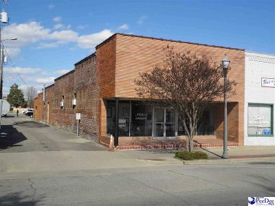 Dillon County Commercial For Sale: 107 E Main Street
