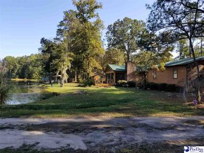 Bennettsville Single Family Home For Sale: 1154 Bruton Fork Church Road