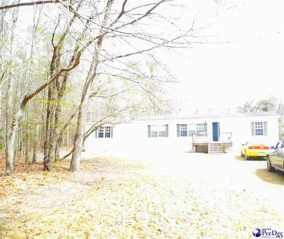 Lake View SC Mobile/Manufactured For Sale: $69,000