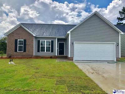 Effingham Single Family Home For Sale: 3001 Red Berry Circle