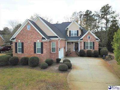 Florence Single Family Home For Sale: 3823 Palmer Drive