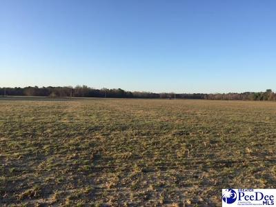 Florence SC Residential Lots & Land Uc/Show For Back Up: $39,000