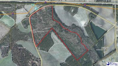 Timmonsville Residential Lots & Land Active-Extended: Oak Stump Road