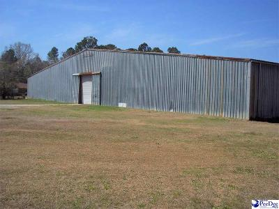 Dillon County Commercial For Sale: 506 W Madison Street
