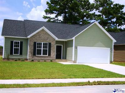 Effingham Single Family Home For Sale: 3003 Red Berry Circle
