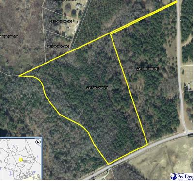 Residential Lots & Land For Sale: 21.3 Acres Midway Rd