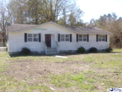 Effingham SC Single Family Home For Sale: $24,900