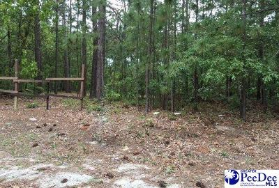 Residential Lots & Land Uc/Show For Back Up: Timmons Drive