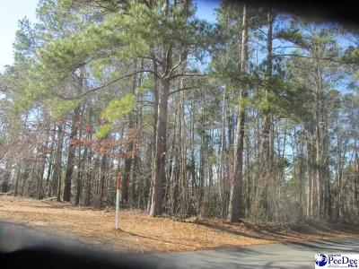 Florence Residential Lots & Land For Sale: 4108 W Pelican Lane
