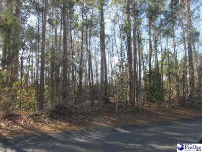 Florence Residential Lots & Land For Sale: 4110 W Pelican Lane