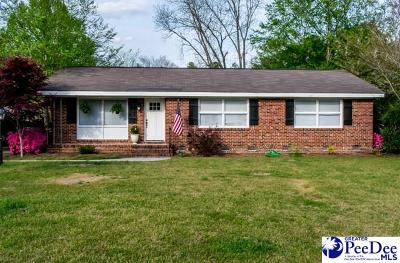 Darlington Single Family Home For Sale: 408 Sheffield Dr
