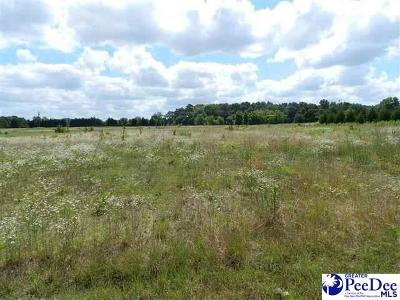 Residential Lots & Land For Sale: Nature Trail, Lot 1