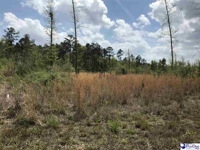 Effingham Residential Lots & Land For Sale: Cubie Road Tract 2