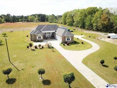 Darlington Single Family Home Uc/Show For Back Up: 1018 Timmonsville Highway
