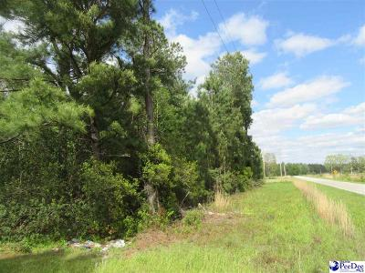 Cades SC Residential Lots & Land For Sale: $10,000