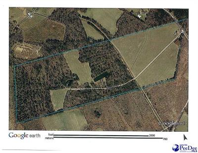 Florence County Residential Lots & Land Uc/Show For Back Up: 3203 Union School Rd