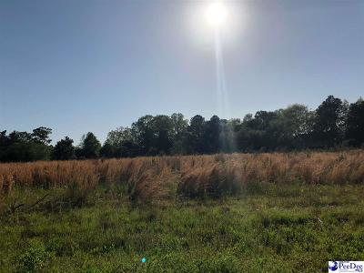 Florence Residential Lots & Land For Sale: McLaurin Drive (Lot # 6)