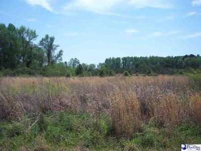 Dillon DC Residential Lots & Land For Sale: $33,500