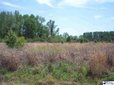 Dillon County Residential Lots & Land For Sale: Wix Road