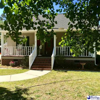 Darlington Single Family Home Uc/Show For Back Up: 124 Grand Dr