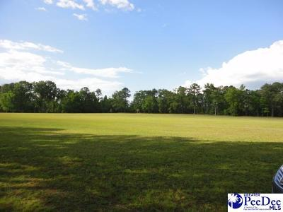 Effingham, Darlington, Darlinton, Florence, Flrorence, Marion, Pamplico, Timmonsville Residential Lots & Land For Sale: Tbd Georgetown Road